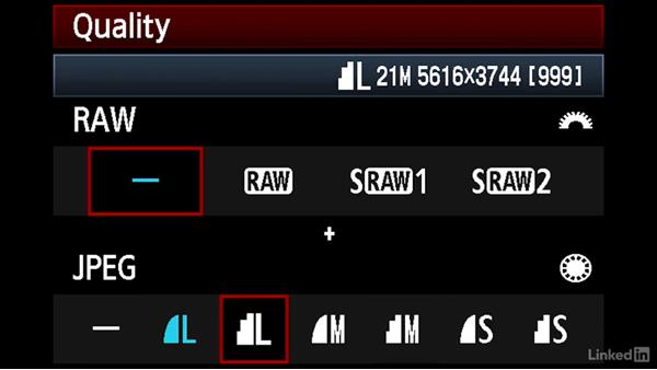 Exploring whether your camera supports raw: Learn Photography: Shooting in Raw Mode
