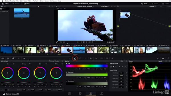 Gallery: Saving and copying timeline-level grades: DaVinci Resolve 12 Advanced Color Grading