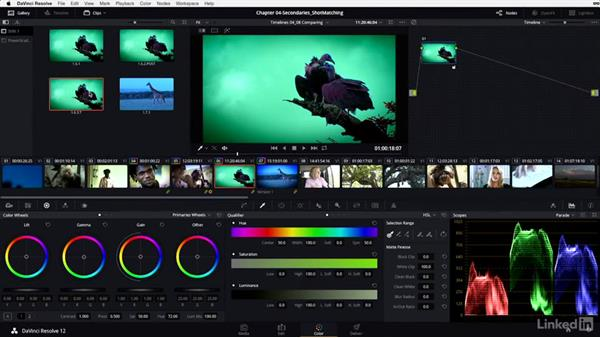 Gallery: Saving and copying group grades: DaVinci Resolve 12 Advanced Color Grading