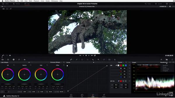 The base grade: Safari: DaVinci Resolve 12 Advanced Color Grading