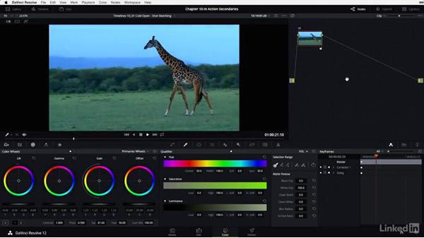 Shot matching: Safari wildlife, part 1: DaVinci Resolve 12 Advanced Color Grading