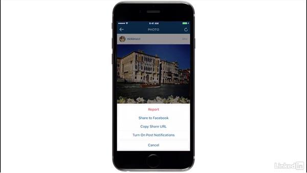 Share other users' photos: Learn Instagram: The Basics