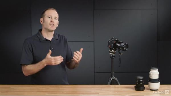 Using the electronic viewfinder effectively: Sony Alpha a7: Tips and Techniques