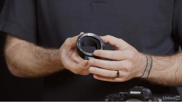 Lens adapter basics with the Sony Alpha a7: Sony Alpha a7: Tips and Techniques