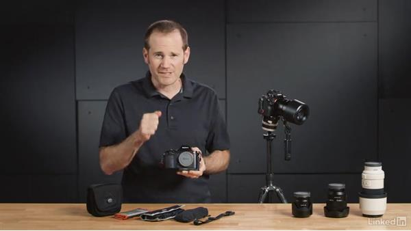Exploring the accessories for the Sony Alpha a7: Sony Alpha a7: Tips and Techniques