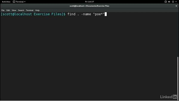 Find files from the command line: Learn the Linux Command Line: The Basics