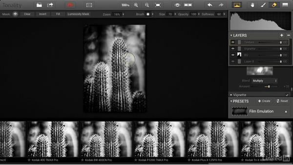 Adding texture and frames: Macphun Software: Tips and Techniques