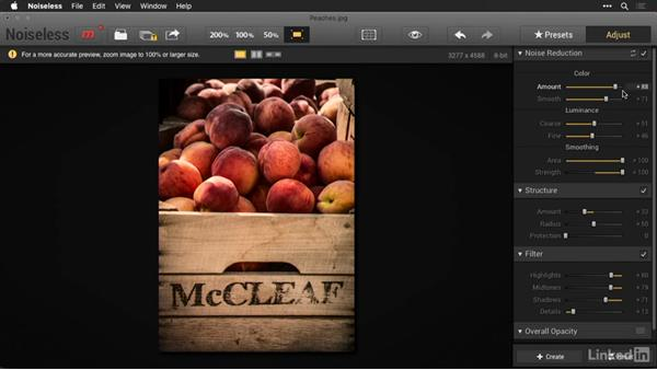 Working with Noiseless presets: Macphun Software: Tips and Techniques