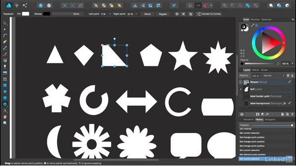 Using special vector shapes: Affinity Designer Essential Training