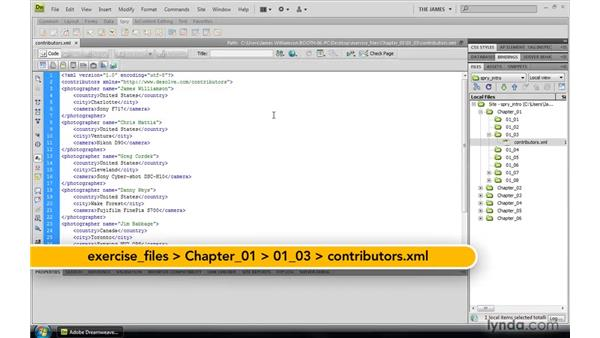 What is XML?: Dreamweaver CS4: Introduction to Spry