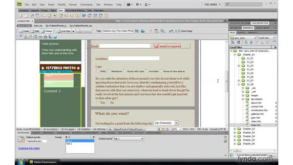 Managing Spry assets: Dreamweaver CS4: Introduction to Spry