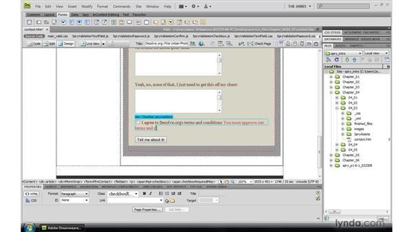 Inserting a checkbox validation widget: Dreamweaver CS4: Introduction to Spry
