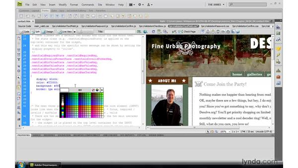 Controlling basic validation widget styling: Dreamweaver CS4: Introduction to Spry