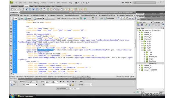 Understanding validation message functionality: Dreamweaver CS4: Introduction to Spry
