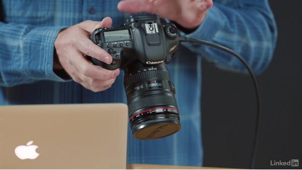 Introduction to metadata: Learn Photo Management: Metadata
