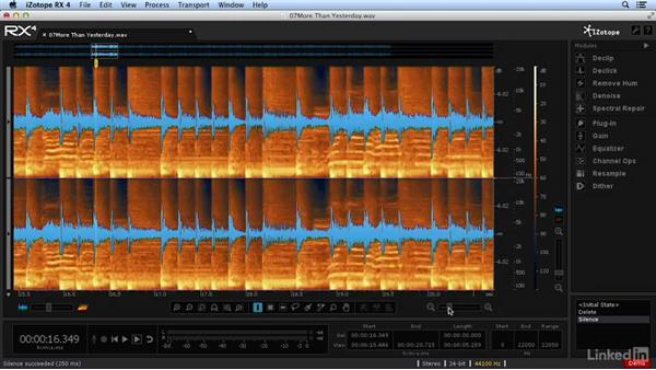 Types of DAWs: Foundations of Digital Audio