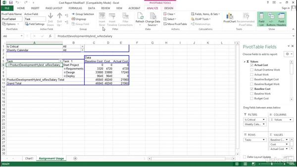 Managing templates: Visualizing a Report in Microsoft Project