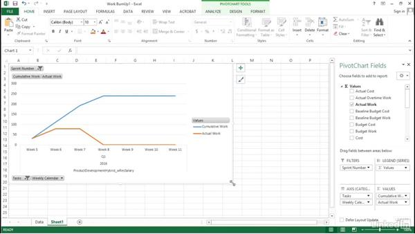 Inserting a graph: Visualizing a Report in Microsoft Project