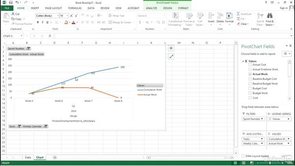 Working with the pivot table: Visualizing a Report in Microsoft Project