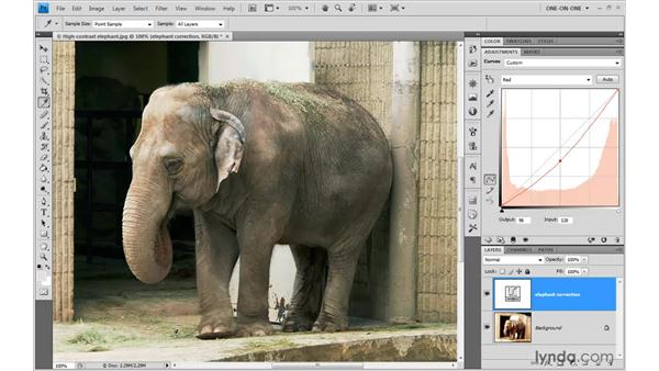 Neutralizing a color cast: Photoshop CS4 One-on-One: Advanced