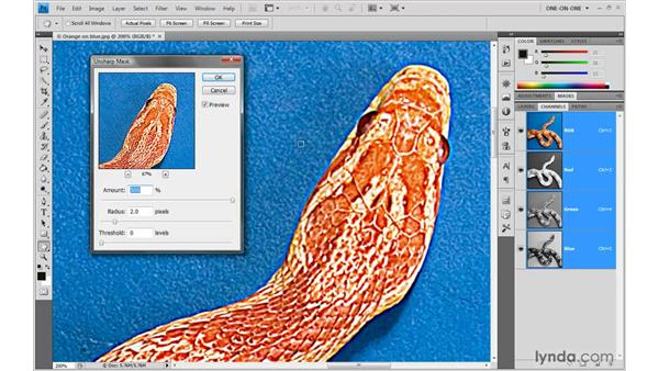 Gauging the best settings: Photoshop CS4 One-on-One: Advanced