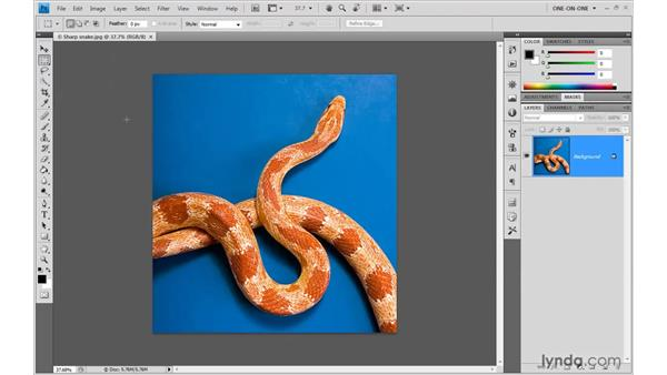 Tweaking the screen resolution: Photoshop CS4 One-on-One: Advanced