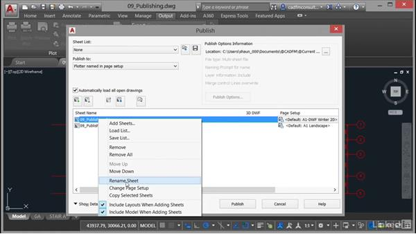 Renaming and removing sheets: AutoCAD: Plotting & Publishing
