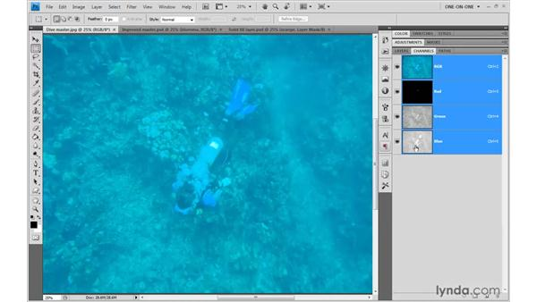 Undersea color channels: Photoshop CS4 One-on-One: Advanced