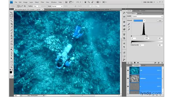 Inventing a Red channel with Lab: Photoshop CS4 One-on-One: Advanced