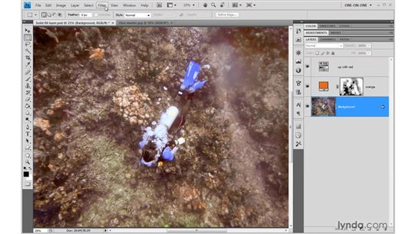 Saturation, sharpen, and crop: Photoshop CS4 One-on-One: Advanced