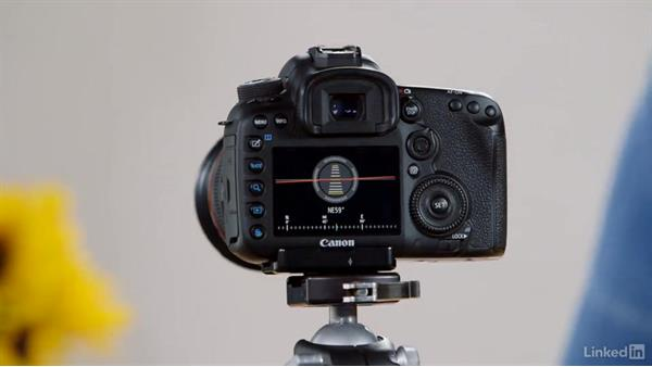 Using Live View with the Canon 7D Mark II: Performance Tuning the Canon 7D Mark II