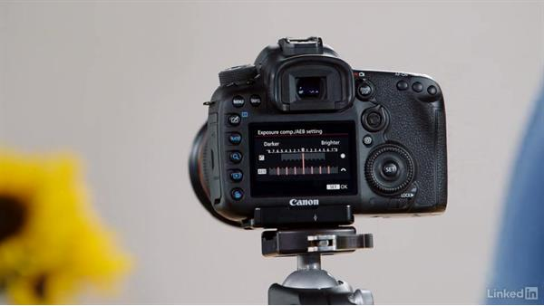 Configuring custom modes on the Canon 7D Mark II: Performance Tuning the Canon 7D Mark II