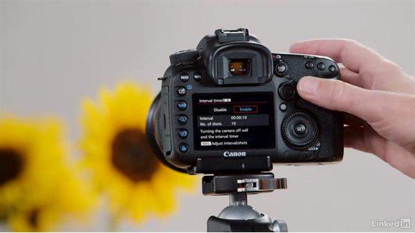 Exploring the use of the built-in intervalometer: Performance Tuning the Canon 7D Mark II
