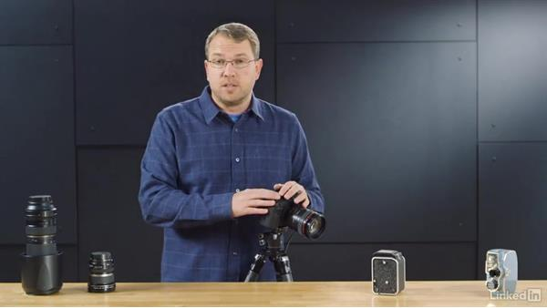 Understanding depth of field: Learn Photography: Autofocus