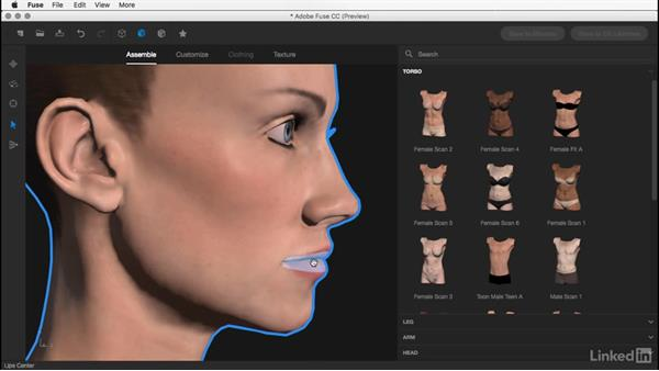 Modifying the head: Learn Adobe Fuse CC: The Basics