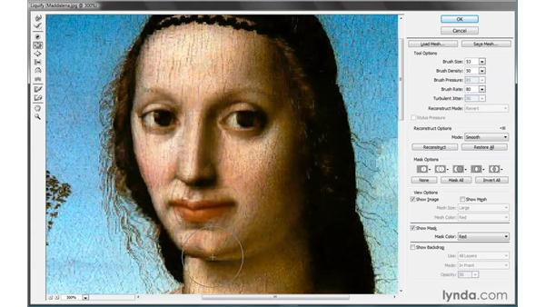 The Pucker and Bloat tools: Photoshop CS4 One-on-One: Advanced