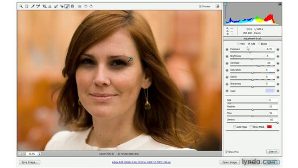 Welcome to the digital darkroom: Photoshop CS4 One-on-One: Advanced