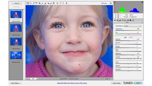 The Camera Raw 5 interface: Photoshop CS4 One-on-One: Advanced