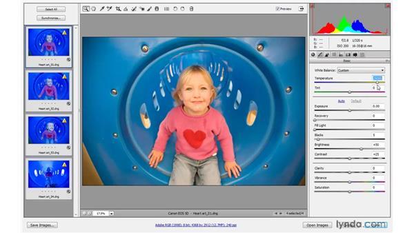 Adjusting the white balance: Photoshop CS4 One-on-One: Advanced