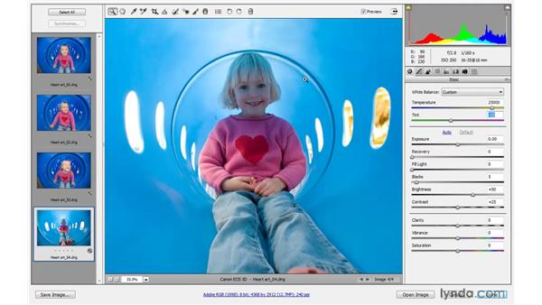 Finessing and saving changes: Photoshop CS4 One-on-One: Advanced