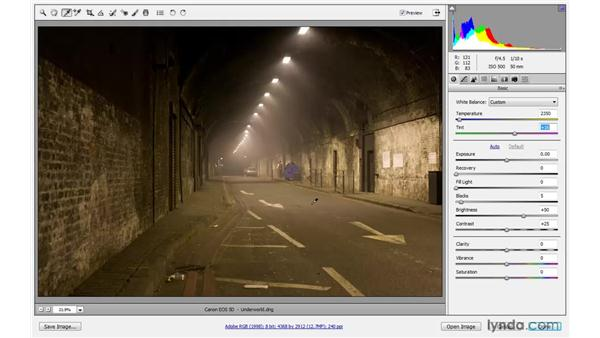 Using the White Balance tool: Photoshop CS4 One-on-One: Advanced
