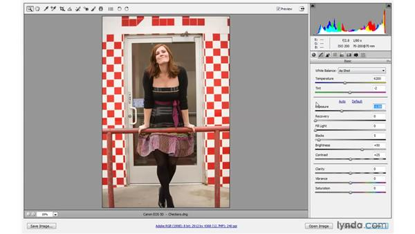 Working with the Exposure controls: Photoshop CS4 One-on-One: Advanced