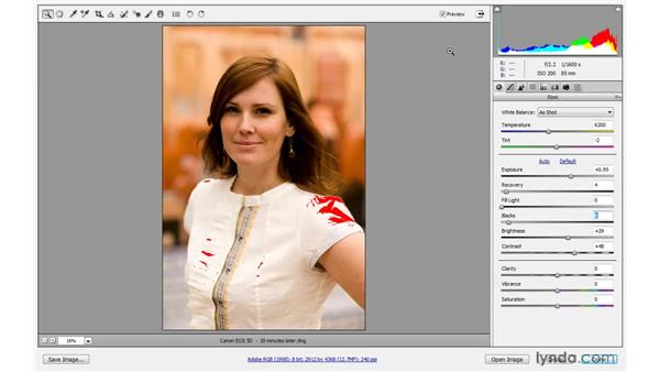 Exposure warnings: Photoshop CS4 One-on-One: Advanced