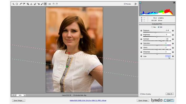 Using the Graduated Filter tool: Photoshop CS4 One-on-One: Advanced