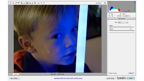 Using the Spot Removal tool: Photoshop CS4 One-on-One: Advanced