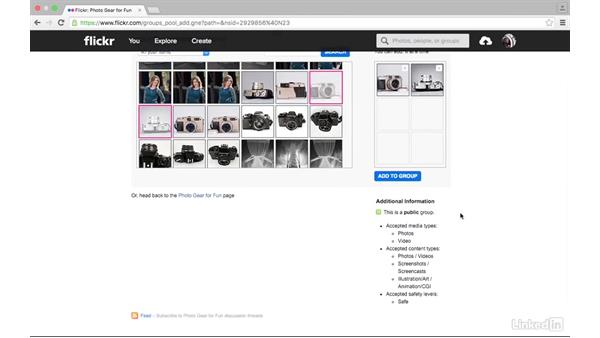 Explore groups: Sharing Photos with Flickr