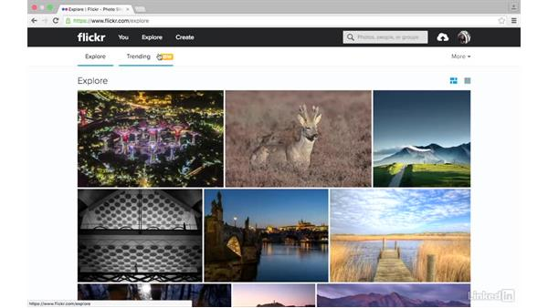 Recent photos: Sharing Photos with Flickr