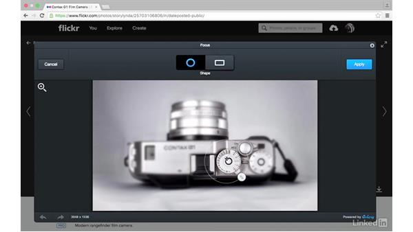 Sharpness and focus: Sharing Photos with Flickr