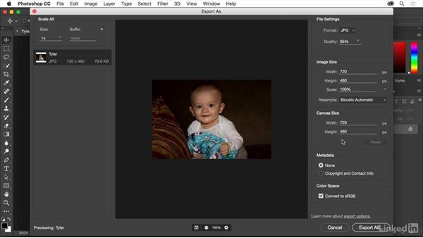 Options for JPEG optimization: Creating Optimized Web Graphics