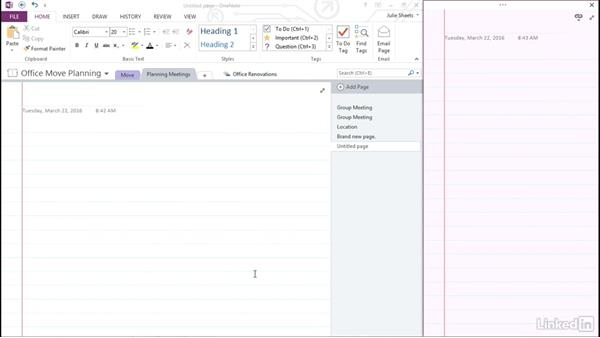 Customize fonts, rule lines, and display settings: OneNote 2013: Prepare for the Microsoft Office Specialist Certification Exam (77-421)